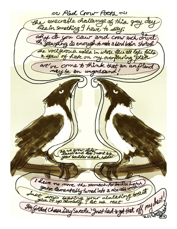 Pied Crow's-Feet