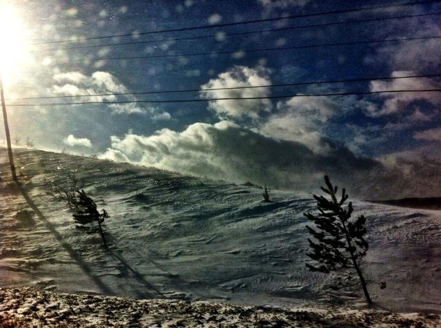 snow46
