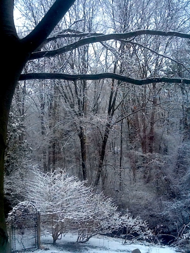 spring snow2